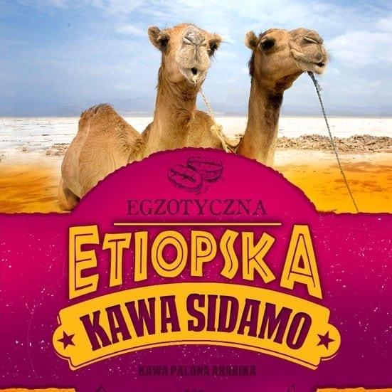 kawa etiopska sidamo