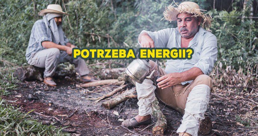 Potrzeba energii? yerba mate z katuavą lub guaraną to naturalny energetyk.